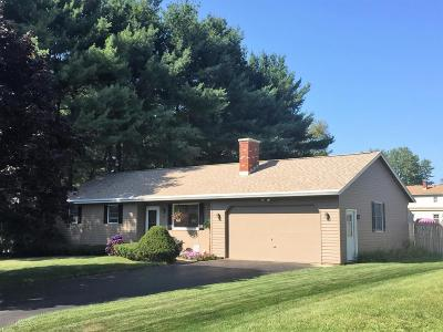 Pittsfield Single Family Home For Sale: 54 Joseph Dr