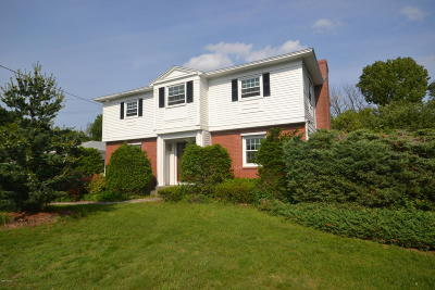 Pittsfield Single Family Home For Sale: 115 Ann Dr