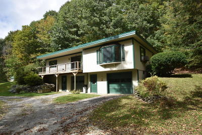 Berkshire County Single Family Home For Sale: 106 Roaring Brook Rd