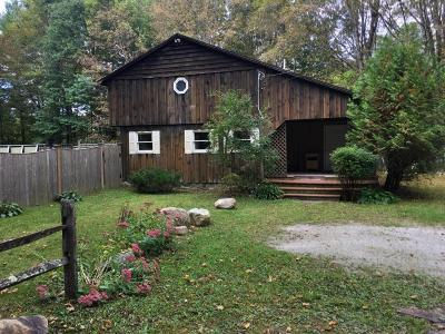 Berkshire County Single Family Home For Sale: 256 Konkapot Rd