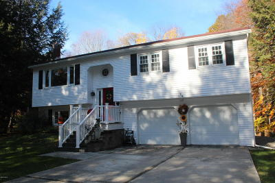 Pittsfield Single Family Home For Sale: 274 Barker Rd