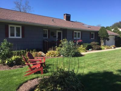Pittsfield Single Family Home For Sale: 17 Rose Ter