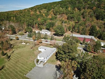 Alford, Becket, Egremont, Great Barrington, Lee, Lenox, Monterey, Mt Washington, New Marlborough, Otis, Sandisfield, Sheffield, South Lee, Stockbridge, Tyringham, West Stockbridge Single Family Home For Sale: 446 Monterey Rd