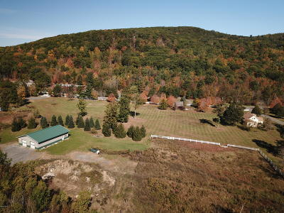 Great Barrington Single Family Home For Sale: 454 Monterey Rd