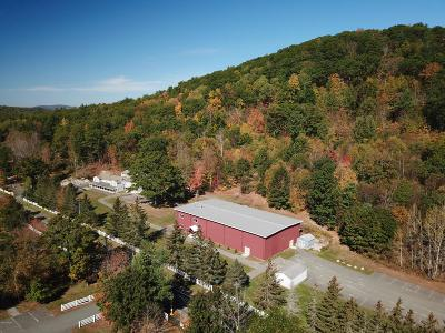 Great Barrington Single Family Home For Sale: 445-449 Monterey Rd
