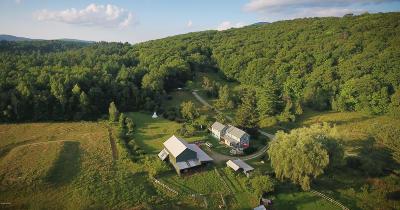 Lanesboro Single Family Home For Sale: 155-156 Kessler Rd
