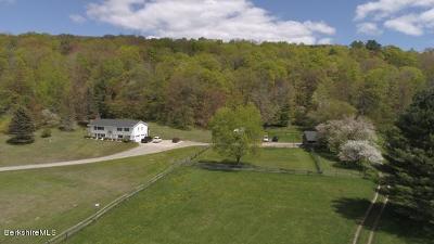Lanesboro MA Single Family Home For Sale: $320,000