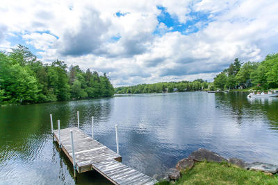 Berkshire County Single Family Home For Sale: 98 Henry Dr