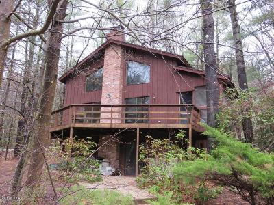 Berkshire County Single Family Home For Sale: 21 Lake Shore Dr