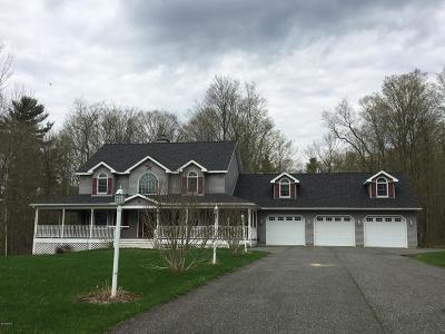 Lanesboro Single Family Home For Sale: 19 Stormview Rd