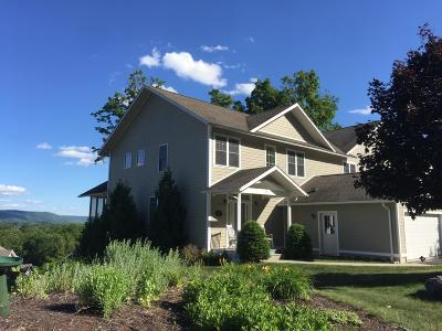 Pittsfield Single Family Home For Sale: 115 Alpine Trail