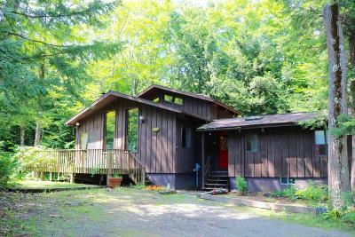Berkshire County Single Family Home For Sale: 329 Tamarack Trail