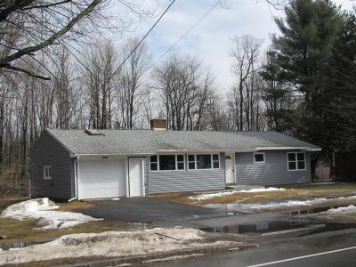 Pittsfield Single Family Home For Sale: 539 Elm St