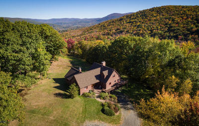 Berkshire County Single Family Home For Sale: 748 Petersburg Rd