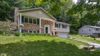 Pittsfield Single Family Home For Sale: 805 East New Lenox Rd