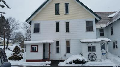 Pittsfield Single Family Home For Sale: 265 Pecks Rd