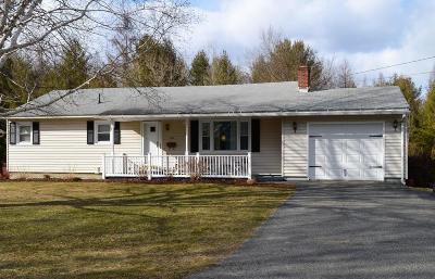 Pittsfield Single Family Home For Sale: 127 Elaine Dr
