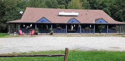 Lanesboro Single Family Home For Sale: 100 Williamstown Rd