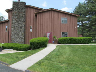 Pittsfield MA Condo/Townhouse For Sale: $269,000