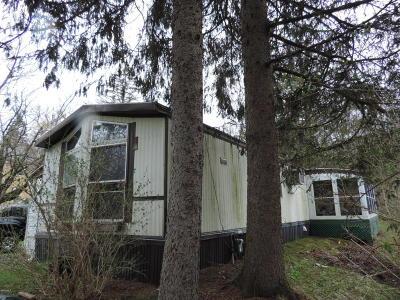 Adams, Clarksburg, Florida, New Ashford, North Adams, Savoy, Williamstown Single Family Home For Sale: 81 Stratton Rd