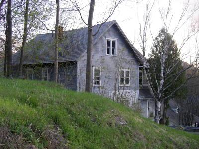 Adams, Clarksburg, Florida, New Ashford, North Adams, Savoy, Williamstown Single Family Home For Sale: 24 Franklin St