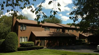 Pittsfield Condo/Townhouse For Sale: 8 Cynthia Ln