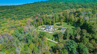 Berkshire County Single Family Home For Sale: 119 Center Rd