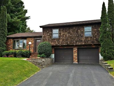 Pittsfield Single Family Home For Sale: 157 Leona Dr