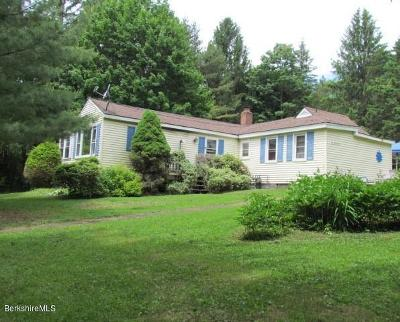 Pittsfield Single Family Home For Sale: 82 Wilson St