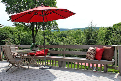 Berkshire County Single Family Home For Sale: 391 Cone Hill Rd
