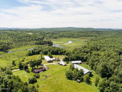 Adams, Clarksburg, Florida, New Ashford, North Adams, Savoy, Williamstown Single Family Home For Sale: 100 Jackson Rd