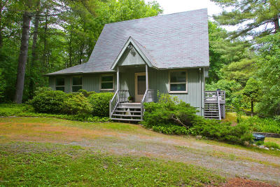 Great Barrington Single Family Home For Sale: 6 Squaw Peak Rd