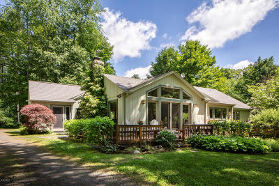 Berkshire County Single Family Home For Sale: 20 Wright Ln