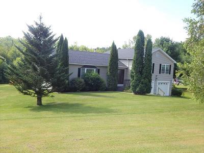 Lanesboro Single Family Home For Sale: 133 Balance Rock Rd