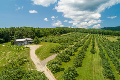 Berkshire County Single Family Home For Sale: 508 Canaan Rd