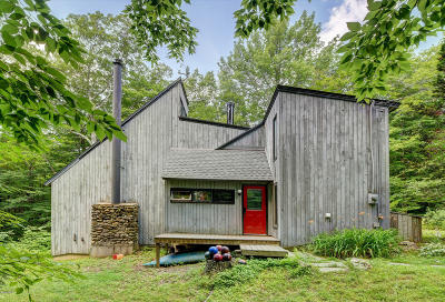Berkshire County Single Family Home For Sale: 247 Beartown Mountain Rd