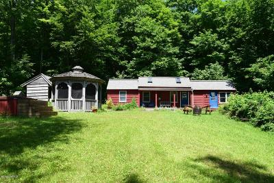 Lanesboro Single Family Home For Sale: 156 Kessler Rd