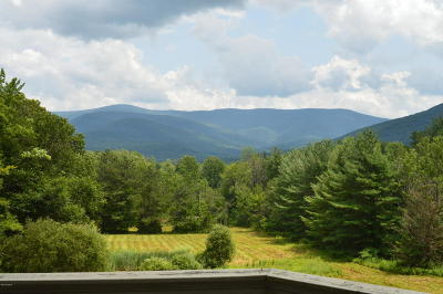 Berkshire County Single Family Home For Sale: 1525 Oblong Rd