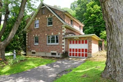 Great Barrington Single Family Home For Sale: 144 Cottage St