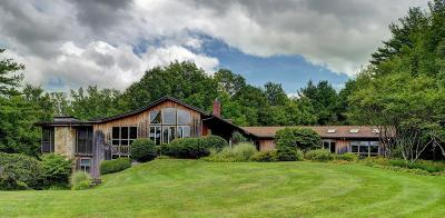 Berkshire County Single Family Home For Sale: 119 Brook Rd