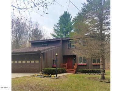 Lanesboro Single Family Home For Sale: 229 Bailey Rd