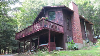 Berkshire County Single Family Home For Sale: 234 Tyringham Rd