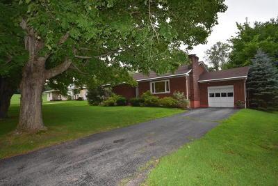 Lanesboro Single Family Home For Sale: 22 Juleann Dr