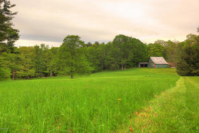 Berkshire County Single Family Home For Sale: 148 East St
