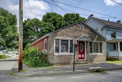 Pittsfield Single Family Home For Sale: 58 Third St
