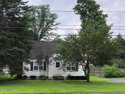Pittsfield Single Family Home For Sale: 366 Elm St