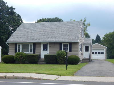 Pittsfield Single Family Home For Sale: 9 Crane Ave