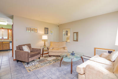 Pittsfield Condo/Townhouse For Sale: 1003 North St #B