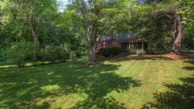 Berkshire County Single Family Home For Sale: 117 Beartown Mountain Rd