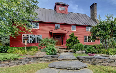 Berkshire County Single Family Home For Sale: 50 Townhouse Hill Rd